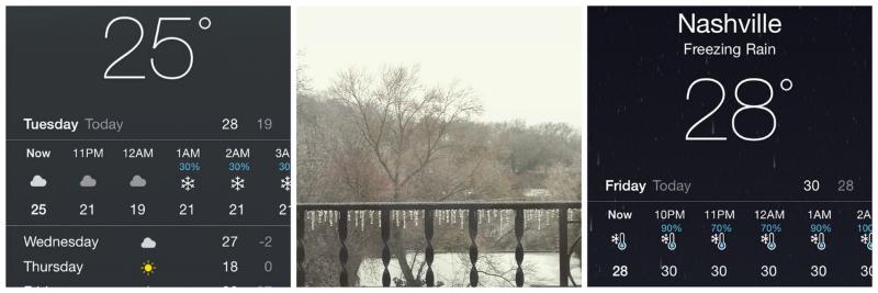 Nash weather