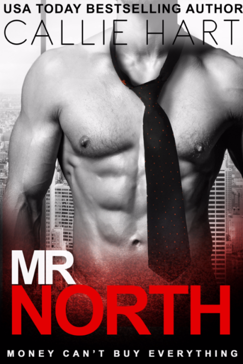 MR NORTH FINAL COVER